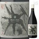 デイビット&ナディア・トポグラフィ・レッド 750ml 南アフリカ 赤ワイン