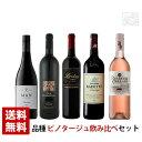 南アフリカ ピノタージュワインセット 5本セット 750ml 飲み比べ 赤ワイン 送料無料