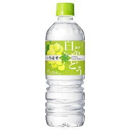 【1ケース】コカ・コーラ い・ろ・は・す <strong>白ぶどう</strong> PET 555mL 飲料 飲み物 ソフトドリンク ペットボトル 24本×1ケース 買い回り 買い周り 買いまわり ポイント消化