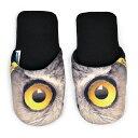 Eusp-eyes-owl