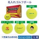 【3営業日出荷対応 オウンネーム 名入れゴルフボール】ダンロ...