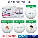 【即日出荷対応 オウンネーム 名入れゴルフボール】ダンロップ...
