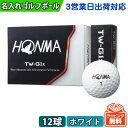 【3営業日出荷対応 オウンネーム 名入れゴルフボール】HONMA 本間ゴルフ TW-G1x 2018...
