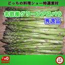 北海道名寄産ピアシリ グリーンアスパラガス(露地アスパラ) L 1.2kg(400gx3)