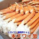 〈ボイル済〉本ずわい蟹 Lサイズ 大容量5kg 【ロシア産】 【かに/蟹/カニ/ずわい/ズワイ/本ズ ...