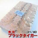 【無頭】ブラックタイガー 31/40 6-8cm 1.8kg 〈業務用〉【冷凍】【ブラックタイガー/