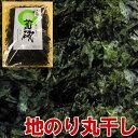伊豆の荒磯 地のり 丸干し 20g 【国内産/のり/海苔/ノリ】