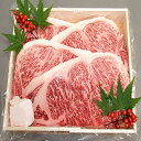【りんご和牛信州牛】 特選 サーロインステーキ (160g×4枚)【楽ギフ_包装】