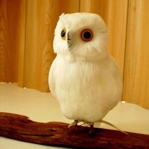 プエブコ フクロウ ホワイト ふくろう