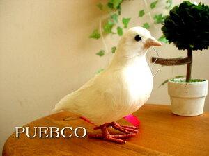 ★PUEBCO(プエブコ)鳥  Dove鳩(ハト) 150 剥製のようなリアルさ雑貨通販【RCP】