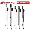 SINANO シナノ レビータ あんしん2本杖 2本組 ノルディック ウォーク ポールウォーキング 安心2本杖 あんしん二本杖 安心二本杖