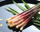 木村農園の矢生姜 愛知県産 産地直送で新鮮 プロ仕様商品 肉巻きが人気 甘酢漬け、天ぷら 磯部揚げに