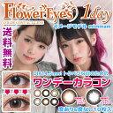 カラコン フラワーアイズ ワンデー ワンデー カラコン 度あり  カラコン 度なし DIA14.5mm 1箱10枚入り mimmam Flower Eye's ...