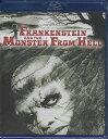 フランケンシュタインと地獄の怪物 【ブルーレイ/Blu-ray】【RCP】