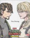 劇場版 TIGER & BUNNY -The Rising- 初回限定版 【DVD】【ポイント10倍/10P03Dec16/1201_flash】