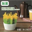 【エコ加湿 ガーデンフラワー】景品/粗品/加湿器/インテリア/乾燥