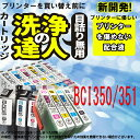 ショッピングプリンター 【洗浄の達人】BCI-351+350/6MPのヘッドクリーニング洗浄 351XLBK/351XLC/351XLM/351XLY/351XLGY/BCI-350XLPGBK  【】