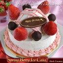 プレミアム ベリーアイスケーキ