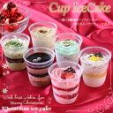 特製 小さなアイスケーキ 6個セット【お誕生日・クリスマス・御歳暮 】
