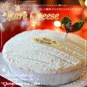 クリスマスアイスケーキ・タルトdeレアチーズ5号