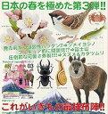 �y�l�C�`���[�e�N�j�J���[�z��{�̂������� 03 Nature of Japan �K�`���@���j�z���J��