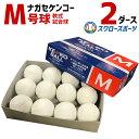 【あす楽対応】 送料無料 ナガセケンコー KENKO 試合球 軟式ボール M号球 M-NEW M球 2