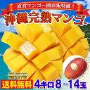 【マンゴー祭】 沖縄完熟マンゴー 贅沢 4キロ! 秀品 農園直送 送料無料 通常36000円が65%引きで12800円!! 贈答用
