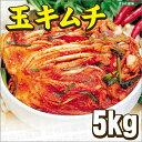 送料無料 玉キムチ 韓国キムチ 白菜 5kg クール便