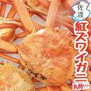 【予約】【訳あり】佐渡産紅ズワイガニ 丸特セット大3-5匹入...