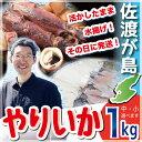 【ポイント2倍 4/10迄】佐渡産 ヤリイカ 1kg サイズが選べる中サイズ6?8ハイ入り、小サイズ