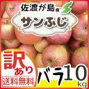 【送料無料】【訳あり】佐渡産りんご『サンふじ』10kg バラ...