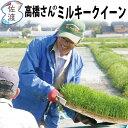 【新米】【送料無料】平成29年度 新潟県佐渡産ミルキークイーン25kg(白米/玄