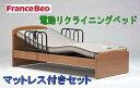 【送料無料】【即納可能】フランスベッド電動リクライニングベッド イーゼル005F NAナチュ