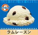 【業務用】ブルーシールアイス アイスクリーム 沖縄限定 4リットル ビッグ 内祝い あす楽 ラムレーズン 大人の味
