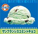 【業務用】ブルーシールアイス アイスクリーム 沖縄限定 4リットル ビッグ 内祝い あす楽 サンフランシスコ・ミントチョコ 大人の味