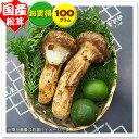 【国産松茸】:お買得松茸 約100g:(兵庫・岡山県産)