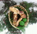 【国産松茸】ひらき・変形松茸:約100g