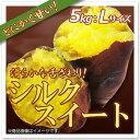 【さつまいも】シルクスイート:約5kg(Lサイズ)茨城県産 滑らかな舌ざわりのしっとりした甘いさつまいも♪さつまいも特有の繊維が少ないので食べやすい!