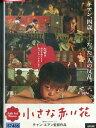 小さな赤い花 / ドゥン・ボウェン【字幕】【中古】【洋画】中古DVD