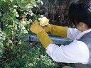 【メール便送料無料】【ポイント10倍】ローズガーデングローブ 女性用 Mサイズ