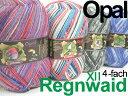 Opal 靴下用毛糸 Regenwald-XII 4-fach【Opal各種2玉以上お買上げで送料無料】