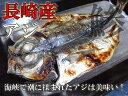 【訳あり特価】真あじ開きの干物 長崎県産 / あじ / 鯵 / ひもの
