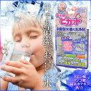 【全国送料無料(メール便発送)※代引き選択の場合は有料です。】自動製氷機洗浄剤・冷蔵庫・冷凍庫・かき氷・洗う・キレイ・水割りうまい!・給水タンク・お掃除・おいしい氷【1000円 ポッキリ】【3回分】/製氷機ピカット