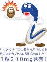 【クーポン有り】...