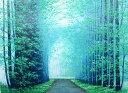 油絵 肉筆絵画 SMサイズ 「朝霧の道」 横山 守 木枠付 -新品