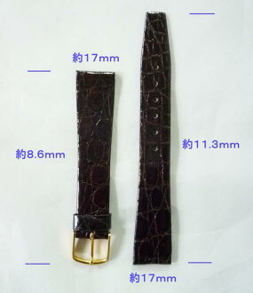 There is crocodile skin belt 17mm --free - bargain item, reason
