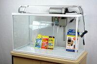 テトラ ホワイトアクアリウム600+LEDライトセット 60cm観賞魚飼育水槽セット 【熱帯魚・アクアリウム/水槽・アクアリウム/水槽セット】