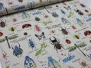 昆虫図鑑 オフ(つぶ入り) ツイル生地 【DM2m便可】|コットンこばやし|むし|ムシ|バッタ|セミ