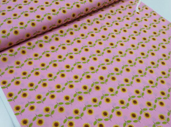 夏のヒマワリ(ひまわり)並んだ ピンク【メール便...の商品画像
