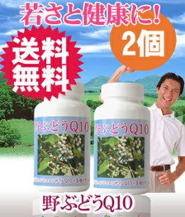 サプリメント ビタミン コエンザ